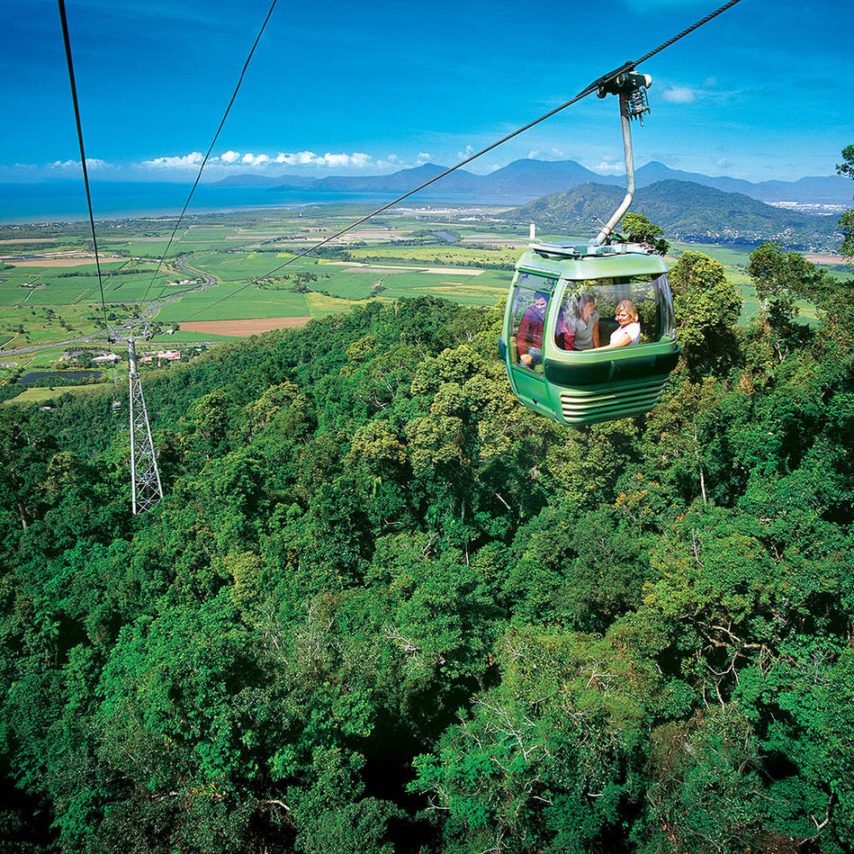 mainCairns Skyrail Rainforest Cableway Round Trip (Return) Family Experience0